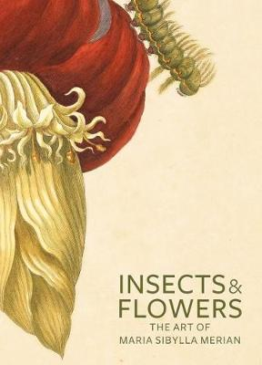 Insects and Flowers by Stephanie Schrader