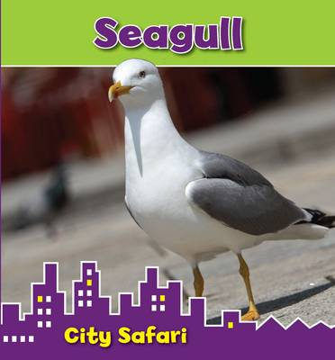 Seagull by Isabel Thomas