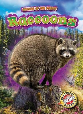 Raccoons by Al Albertson