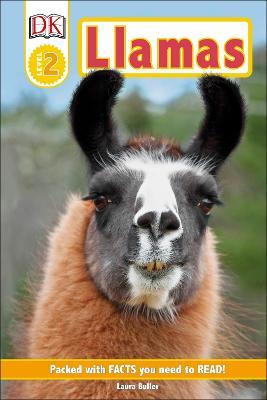 Llamas by DK