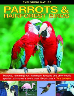 Exploring Nature: Parrots & Rainforest Birds by Tom Jackson
