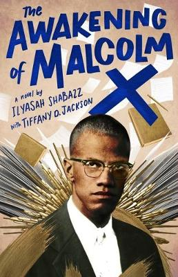The Awakening of Malcolm X book