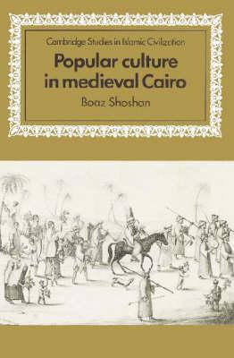 Popular Culture in Medieval Cairo book
