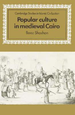 Popular Culture in Medieval Cairo book