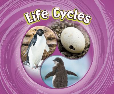 Life Cycles by Jaclyn Jaycox
