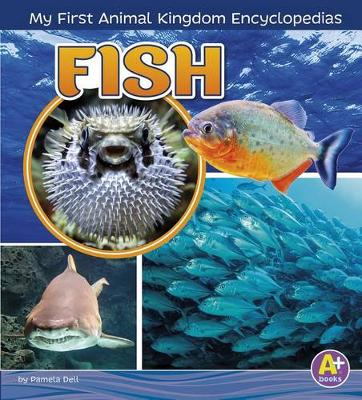 Fish by Lisa J. Amstutz