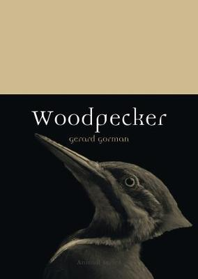Woodpecker by Gerard Gorman