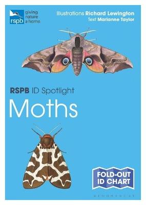 Rspb Id Spotlight - Moths by Marianne Taylor