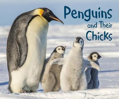 Penguins and Their Chicks: A 4D Book by Margaret Hall