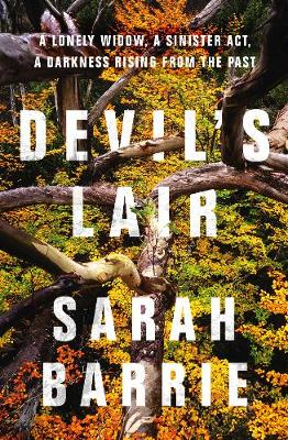 Devil's Lair by Sarah Barrie