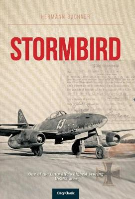 Stormbird by Hermann Buchner
