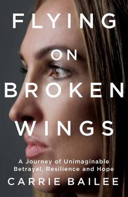 Flying on Broken Wings book
