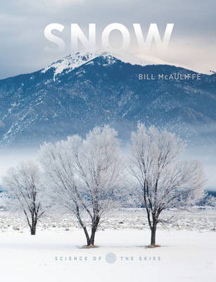 Snow by Bill McAuliffe