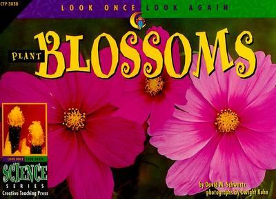 Plant Blossoms by David M Schwartz