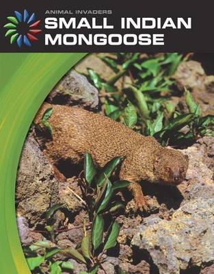 Small Indian Mongoose by Barbara Somervill