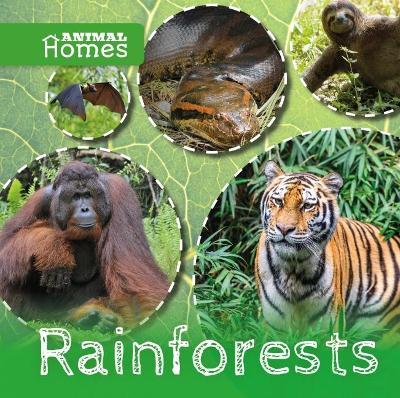 Rainforests by John Wood