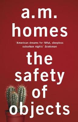 Safety of Objects by A. M. Homes