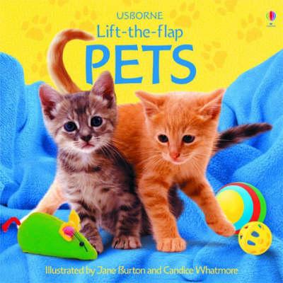 Pets by Sarah Khan