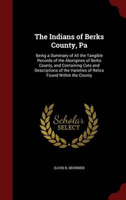 The Indians of Berks County, Pa by David B Brunner