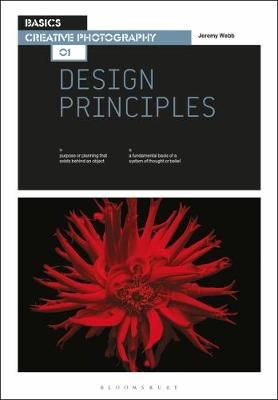 Basics Creative Photography 01: Design Principles by Jeremy Webb