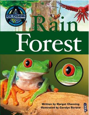 Rain Forest by Margot Channing
