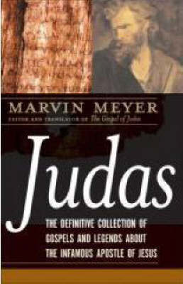 Judas by Marvin Meyer