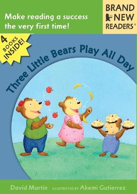 Three Little Bears Play All Day V2 by Martin David