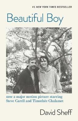 Beautiful Boy: A Father's Journey Through His Son's  Addiction book