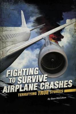 Airplane Crashes by Sean McCollum