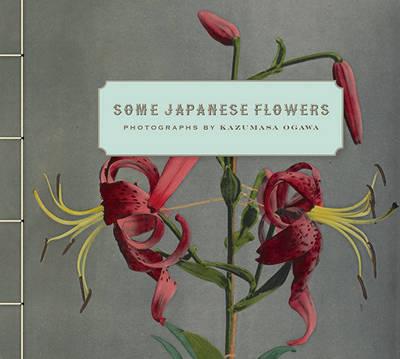Some Japanese Flowers - Photographs by Kazumasa Ogawa by Kazumasa Ogawa