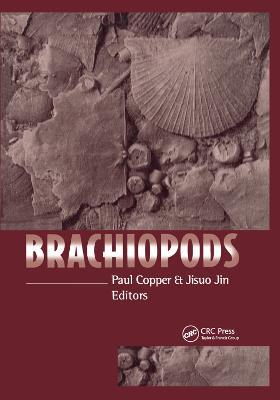Brachiopods by Paul Copper