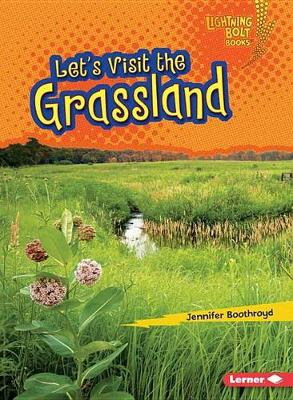 Let's Visit the Grassland by Jennifer Boothroyd