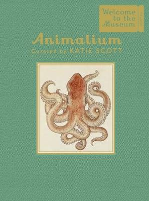 Animalium - Mini Gift Edition by Jenny Broom
