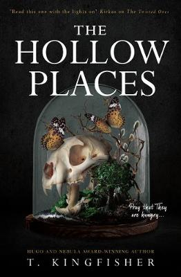 The Hollow Places by