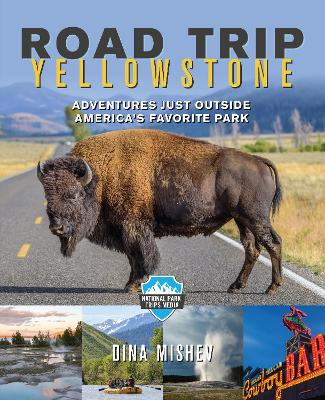 Road Trip Yellowstone by Dina Mishev