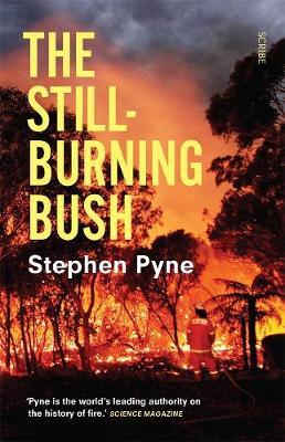 The Still-Burning Bush Updated Edition book