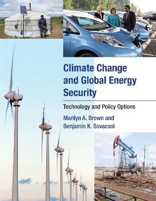 Climate Change and Global Energy Security by Marilyn A. Brown