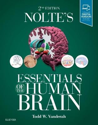Nolte's Essentials of the Human Brain by Todd Vanderah