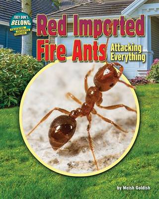 Red Imported Fire Ants by Meish Goldish