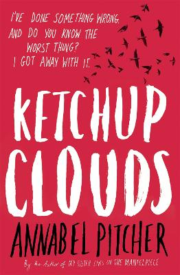 Ketchup Clouds book
