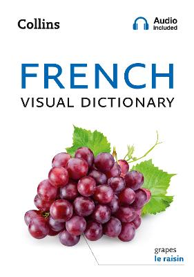 French Visual Dictionary: A photo guide to everyday words and phrases in French (Collins Visual Dictionary) by Collins Dictionaries