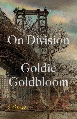 On Division: A Novel book