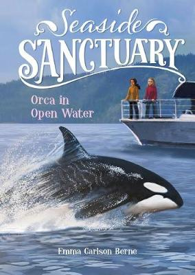 Orca in Open Water book