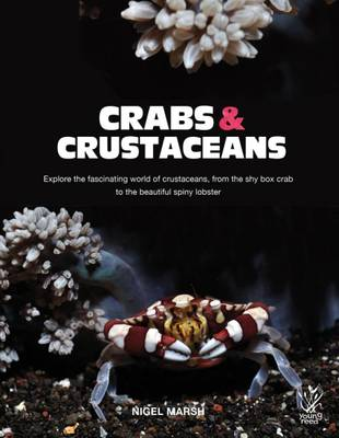Crabs and Crustaceans by Nigel Marsh