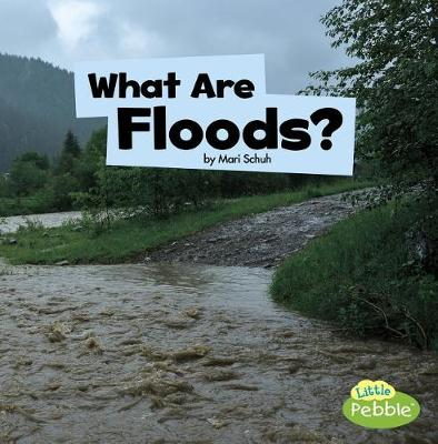 What Are Floods? by Mari Schuh