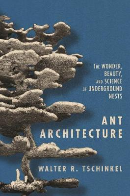 Ant Architecture: The Wonder, Beauty, and Science of Underground Nests by Walter R. Tschinkel