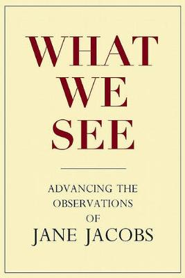 What We See by Stephen A. Goldsmith