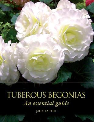 Tuberous Begonias book