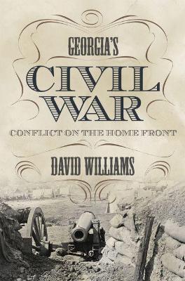 Georgia's Civil War by David Williams