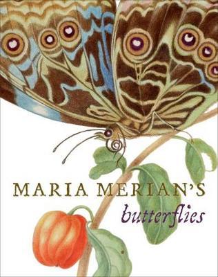 Maria Merian's Butterflys by Kate Heard
